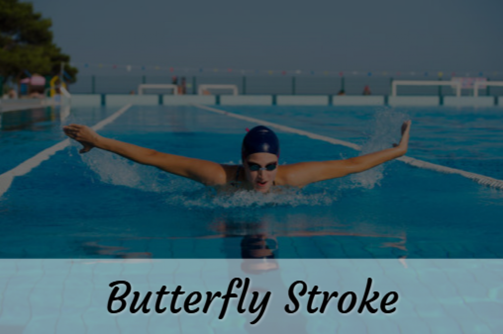 Swimming Butterfly Stroke