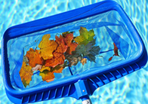 pool surface skimmers