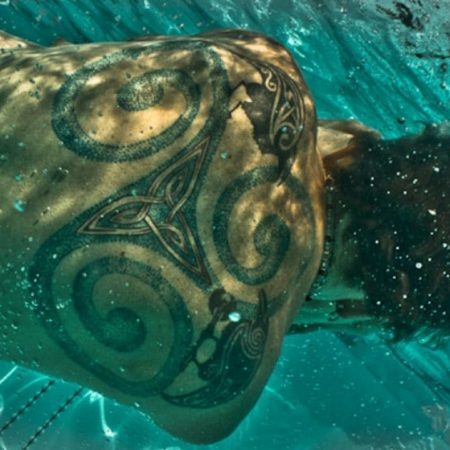 How Long After A Tattoo Can You Swim In Chlorine? – (Updated 2020)
