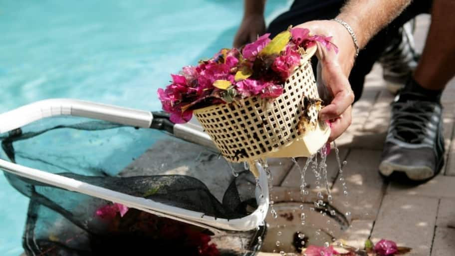 Along with the pool filter, you have to check the other baskets and collection pots that your pool has. First of all clean the hair and lint pot on your pool pump. To do this you have to turn off the pump and then release the system pressure.